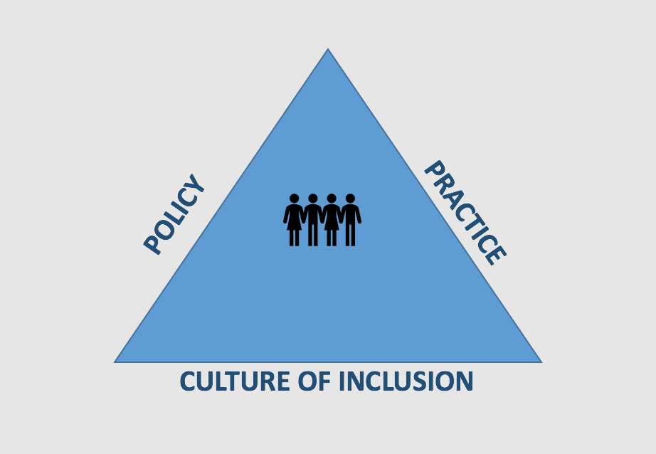 Screenshot of the SIP Elements of Inclusion